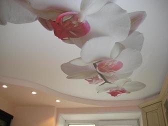 Просмотреть фото  Натяжные потолки 35287808 в Саратове