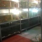 Комплекс для разведения аквариумных рыб