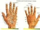 Смотреть изображение  проводим Тестирование организма в Стерлитамаке 69493716 в Стерлитамаке