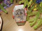 Фотография в Кошки и котята Вязка Красивая , молодая, породистая кошечка ждет в Тюмени 0