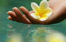 Путь к здоровью и красоте с мастером массажа