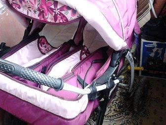 Скачать фото Продажа собак, щенков двойная коляска 33622995 в Твери