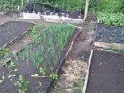 Скачать фото Сады 6 соток в 15 км от Уфы 37660145 в Уфе