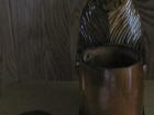 Уникальное изображение Аудиотехника Сувенирный медведь с бочонком для меда 68249742 в Уфе