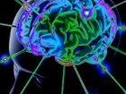 Изображение в Красота и здоровье Медицинские услуги Технология Странник рассматривает организм в Ульяновске 4500000