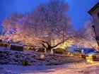 Изображение в   Рождественские туры в Грецию – особые праздничные в Ульяновске 0