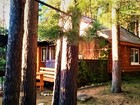 Новое изображение  Сдаю частный дом в турбазе Чайка-Селигер, в сосновом бору, у озера 63571794 в Осташкове
