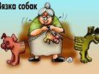 Фотография в Домашние животные Разное ателье-магазин одежды для собак Алефтинка в Москве 25000