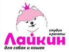 Уникальное фотографию Разное салон красоты для собак и кошек ЛАЙКИН 37517373 в Владимире