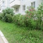1 комн, квартира улучшен, планн, в п, Сокол, 35 кв м, 4/5 эт.