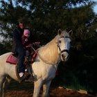 Конные прогулки,фотосессии в пригороде Владивостока