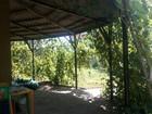 Просмотреть изображение  Продаю дачу в садоводстве Зеленый мыс с собственным берегом, 67809088 в Волгодонске