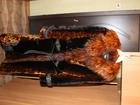 Свежее изображение Женская одежда Шуба мутоновая б/у 34363077 в Волгограде