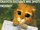 Просмотреть фотографию Курсовые, дипломные работы Рефераты курсовые и дипломные по вашей цене 32464295 в Воронеже