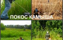 Покос травы в Воронеже