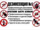 Уникальное foto  ДЕЗИНСЕКЦИЯ 35016647 в Зеленогорске