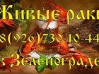 Смотреть фото  ЖИВЫЕ РАКИ озеро Севан Армения 34722776 в Зеленограде