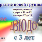Зеленоград, Детское игровое дзюдо с 3 лет