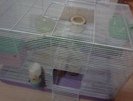 Продажа клетки для грызунов Продам клетку для грызунов в отличном состоянии. Дл