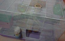 Продажа клетки для грызунов