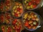 Смотреть изображение  помидоры солёные бочковые 63557865 в Жуковском